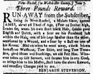 Jun 25 - New-York Gazette and Weekly Mercury Slavery 1