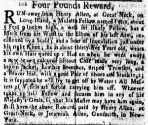 Jun 25 - New-York Gazette and Weekly Mercury Supplement Slavery 4