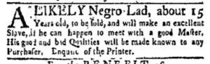 Nov 6 - New-York Gazette and Weekly Mercury Slavery 1