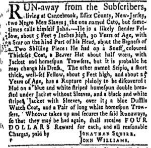 Nov 6 - New-York Gazette and Weekly Mercury Slavery 2