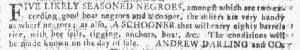 Dec 13 - Georgia Gazette Supplement Slavery 5