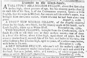 Dec 20 - Georgia Gazette Slavery 12