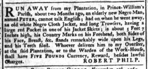 Dec 8 - South-Carolina Gazette Supplement Slavery 1