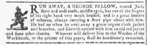 Feb 7 1770 - Georgia Gazette Slavery 2