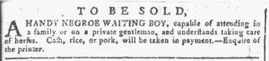 Feb 7 1770 - Georgia Gazette Slavery 5