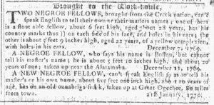 Feb 7 1770 - Georgia Gazette Slavery 9