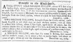 Jan 24 1770 - Georgia Gazette Slavery 11