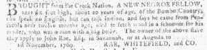 Feb 28 1770 - Georgia Gazette Slavery 6