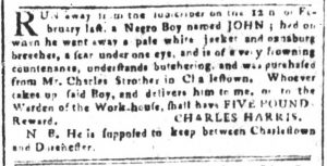 Apr 20 1770 - South-Carolina and American General Gazette Slavery 3