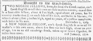 Apr 25 1770 - Georgia Gazette Slavery 6