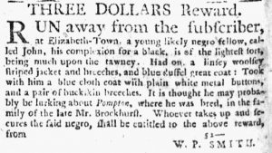 Nov 22 1770 - New-York Journal Slavery 7