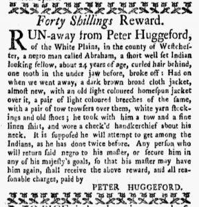 Nov 26 1770 - New-York Gazette and Weekly Mercury Supplement Slavery 2