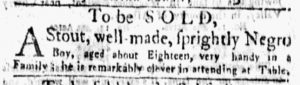 Nov 5 1770 - New-York Gazette and Weekly Mercury Supplement Slavery 6