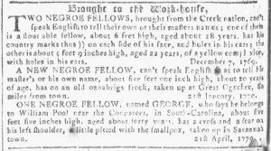 May 16 1770 - Georgia Gazette Slavery 6