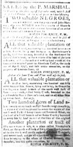Aug 20 1770 - South-Carolina and American General Gazette Slavery 3