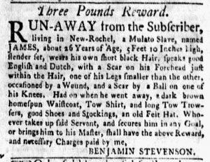 Jul 9 - New-York Gazette and Weekly Mercury Slavery 2